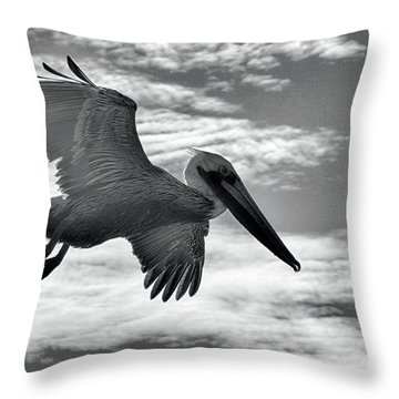 Pelican In Flight Throw Pillow by AJ Schibig