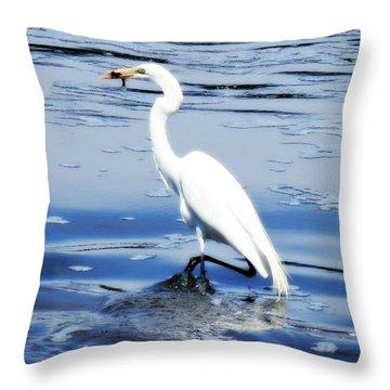 Pelican In It's Glory Throw Pillow