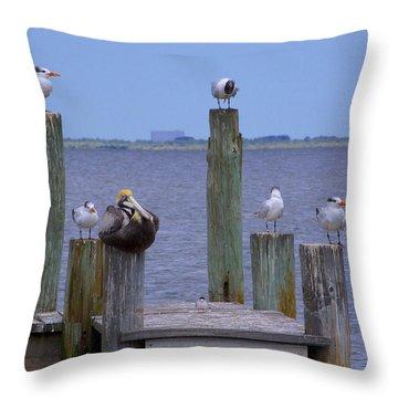 Pelican Incognito Throw Pillow