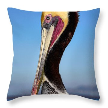 Pelican Looking Throw Pillow