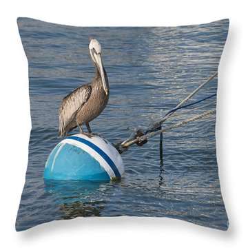 Pelican On A Buoy Throw Pillow by Loriannah Hespe