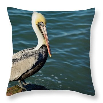 Pelican On A Rock Throw Pillow