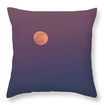Pelican Over The Moon Throw Pillow