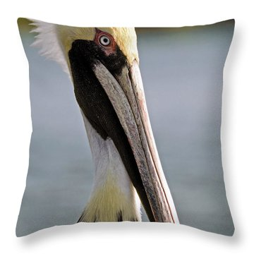 Pelican Portrait Throw Pillow by Sally Weigand