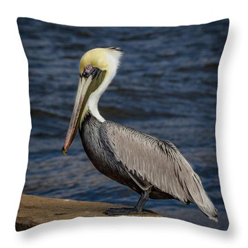 Throw Pillow featuring the photograph Pelican Profile 2 by Jean Noren