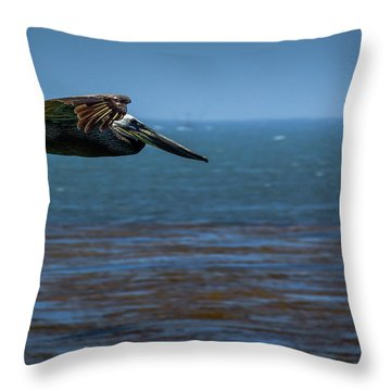 Pelican  Throw Pillow by Randy Bayne