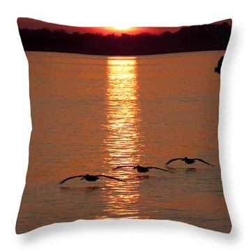 Pelican Sunset Throw Pillow by Dustin K Ryan