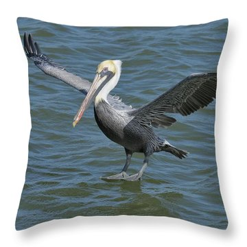 Throw Pillow featuring the photograph Pelican Walks On Water by Bradford Martin