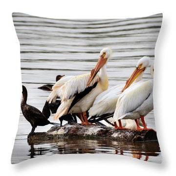 Pelicans And Cormorants Throw Pillow
