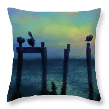 Throw Pillow featuring the photograph Pelicans At Sunset by Jan Amiss Photography