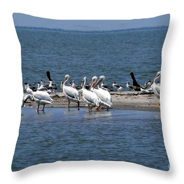 Pelicans Island Throw Pillow