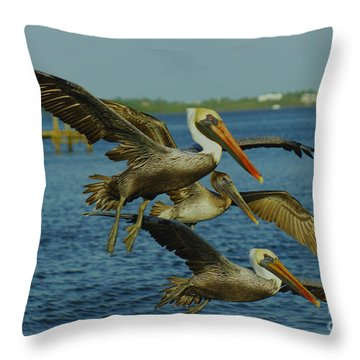 Pelicans Three Amigos Throw Pillow by Larry Nieland