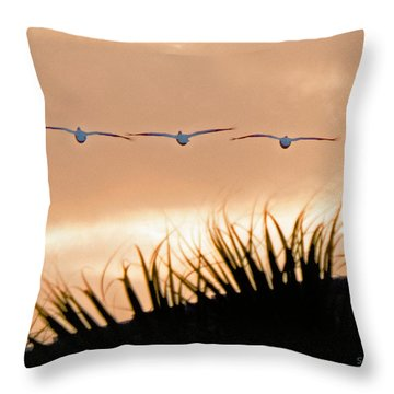 Pelicans Three Throw Pillow