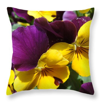 Pella Pansies Throw Pillow