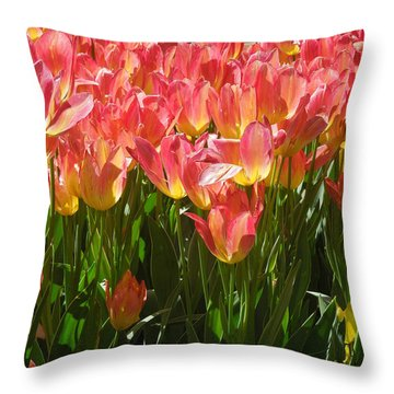 Pella Tulips Yellow Pink Throw Pillow