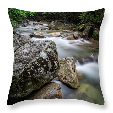Throw Pillow featuring the photograph Pemi-basin Trail by Michael Hubley