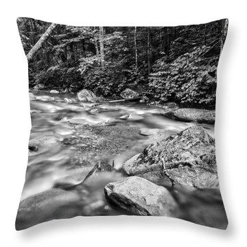 Pemi River Black-white Throw Pillow