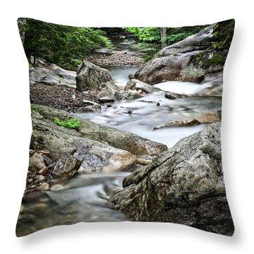Pemigewasset River Nh Throw Pillow