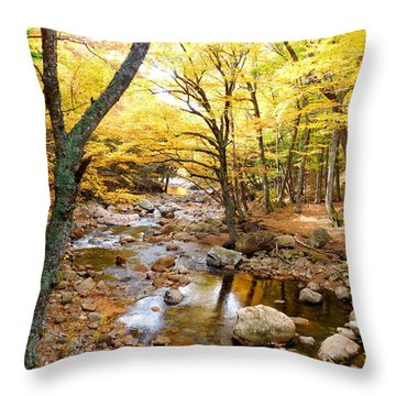 Pemigwasett River At The Flume Throw Pillow