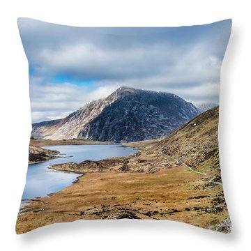Pen Yr Ole Wen Throw Pillow