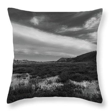 Penasquitos Creek Marsh Throw Pillow