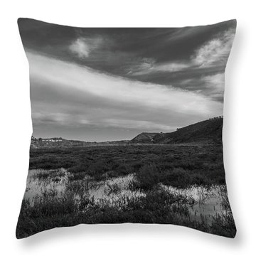 Penasquitos Creek Marsh Throw Pillow