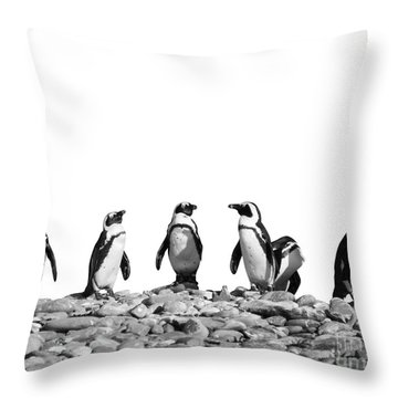 Penguins Throw Pillow by Delphimages Photo Creations