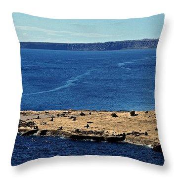 Peninsula De Valdez Throw Pillow by Juergen Weiss