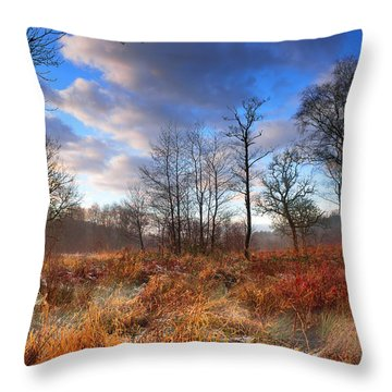 Penllergaer 1 Throw Pillow