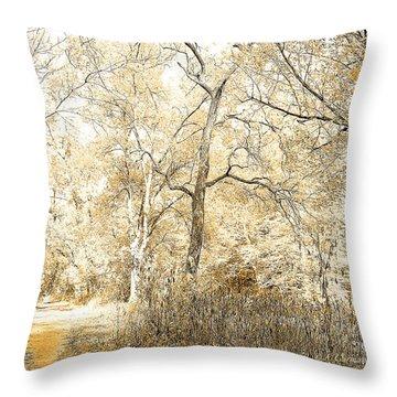 Pennsylvania Autumn Woods Throw Pillow