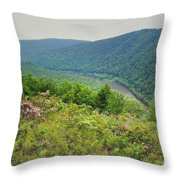 Pennsylvania Mountain Outlook Throw Pillow by Andrea Hazel Ihlefeld