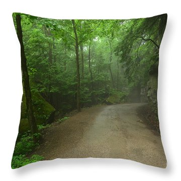 Pennsylvania Mountain Scene - 2 Throw Pillow by Bob Sample