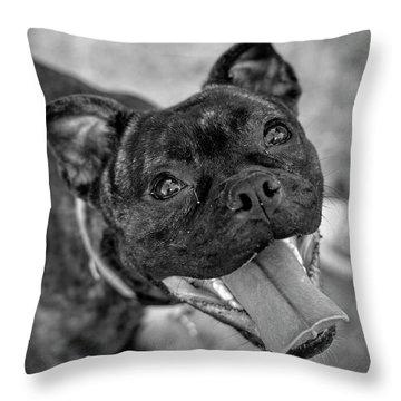 Penny - Dog Portrait Throw Pillow