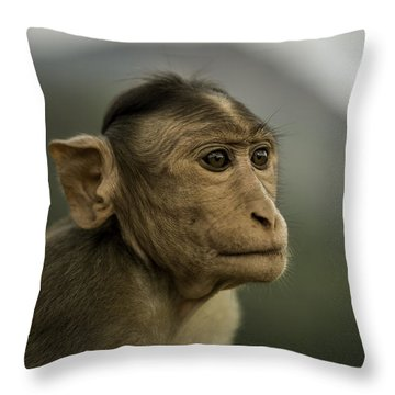 Throw Pillow featuring the photograph Penny For Your Thoughts by Chris Cousins