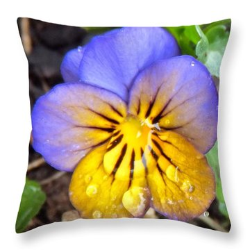 Pensee Bicolore Throw Pillow
