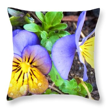 Pensees Bicolores Throw Pillow