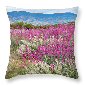 Penstemon At Black Hills Throw Pillow by Karen Stephenson