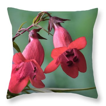 Penstemon Throw Pillow
