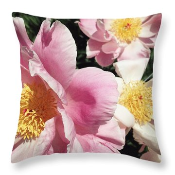 Throw Pillow featuring the photograph Peonies37 by Olivier Calas