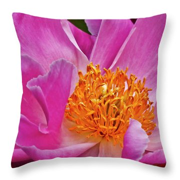 Pink Peony Garden Splendor Throw Pillow by Carol F Austin