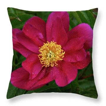 Peony In Rain Throw Pillow