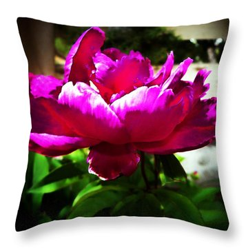 Throw Pillow featuring the photograph Peony by Joseph Frank Baraba