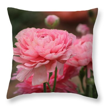 Peony Pink Ranunculus Closeup Throw Pillow