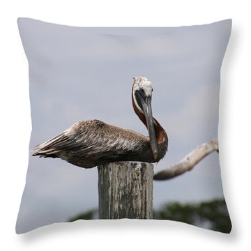 Waiting For Ship To Roll In Throw Pillow
