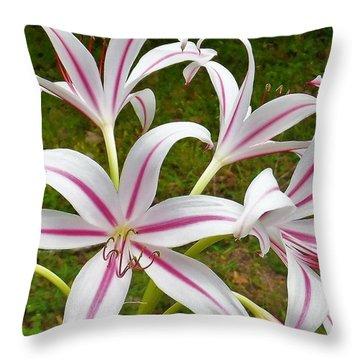 Peppermint Lilies Throw Pillow