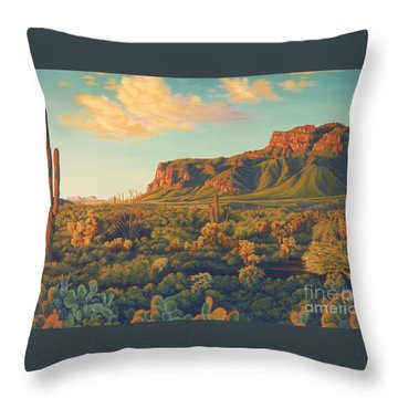 Desert Sunset Throw Pillows