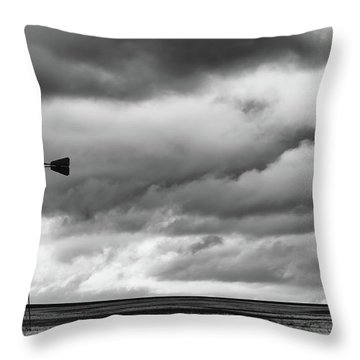 Perched And Looking Throw Pillow