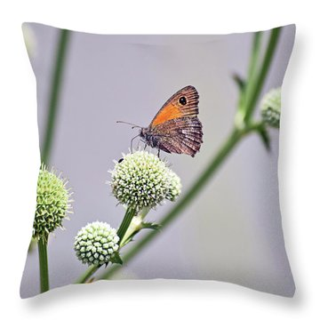 Perched Butterfly No. 255-1 Throw Pillow