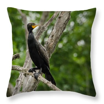 Perched Double-crested Cormorant Throw Pillow