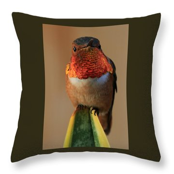 Perched On A Point Throw Pillow